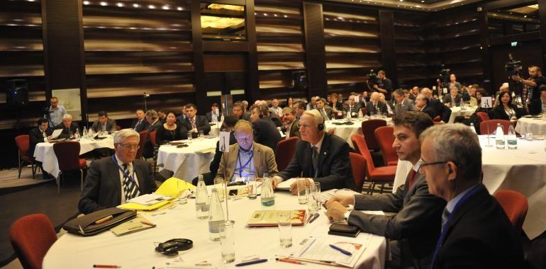 Singurele care pot aduce potentialul tarii la nivel european